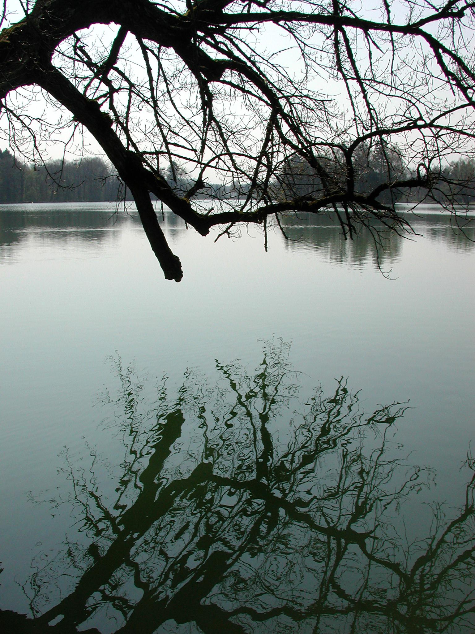 A calm, blue lake in Austria.